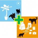 犬の在宅看護師+ペット災害4級セット