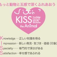 kiss the animal