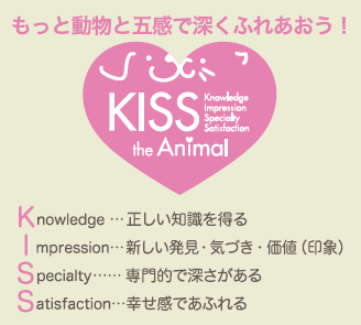 kiss the animal