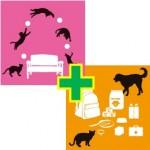 猫健康管理士+ペット災害4級セット