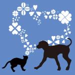 愛玩動物介護士通信認定講座