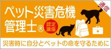 bnr_01_saigai