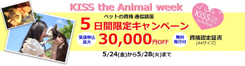 ペットの資格取得応援キャンペーン