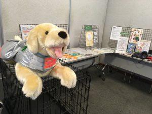 京都会場で展示されたペット防災グッズ