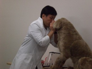 人工呼吸は鼻と口をおさえてせっかく入れた空気が漏れないように